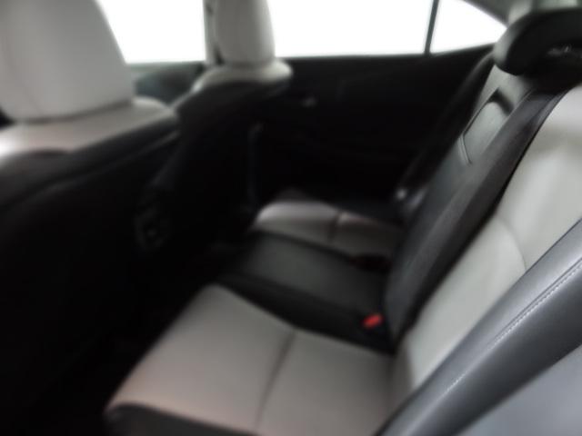2010 Lexus HS 250h Premium